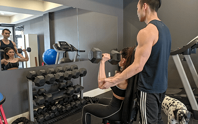 Reasons Why You Need a Structured Fitness Plan